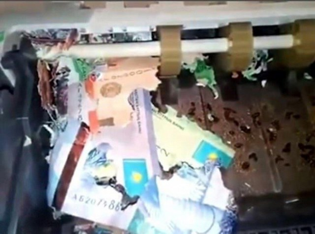 Chuột chui vào trong cây ATM, cắn nát nhiều tiền mặt