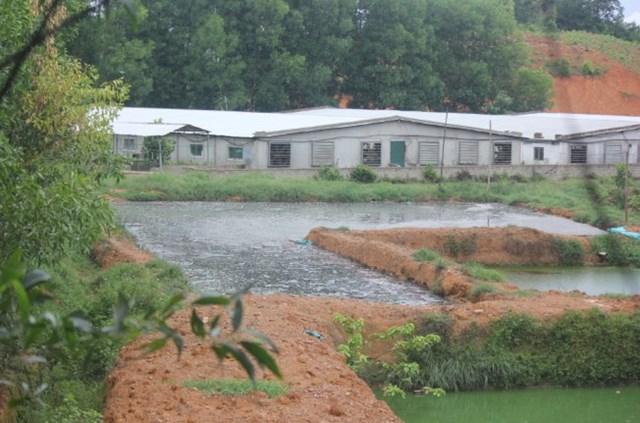 Dân kêu cứu vì trại lợn gây ô nhiễm