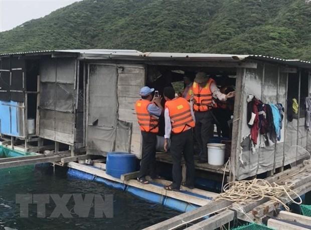 Khánh Hòa: 'Thủ phủ' nuôi tôm hùm di dời gần 40.000 lồng bè tránh bão - 1