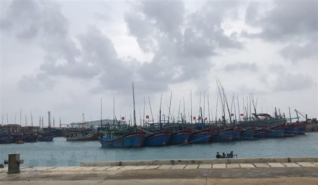 Chiều tối 10/11, bão số 6 đi vào các tỉnh Quảng Ngãi đến Khánh Hòa - 1