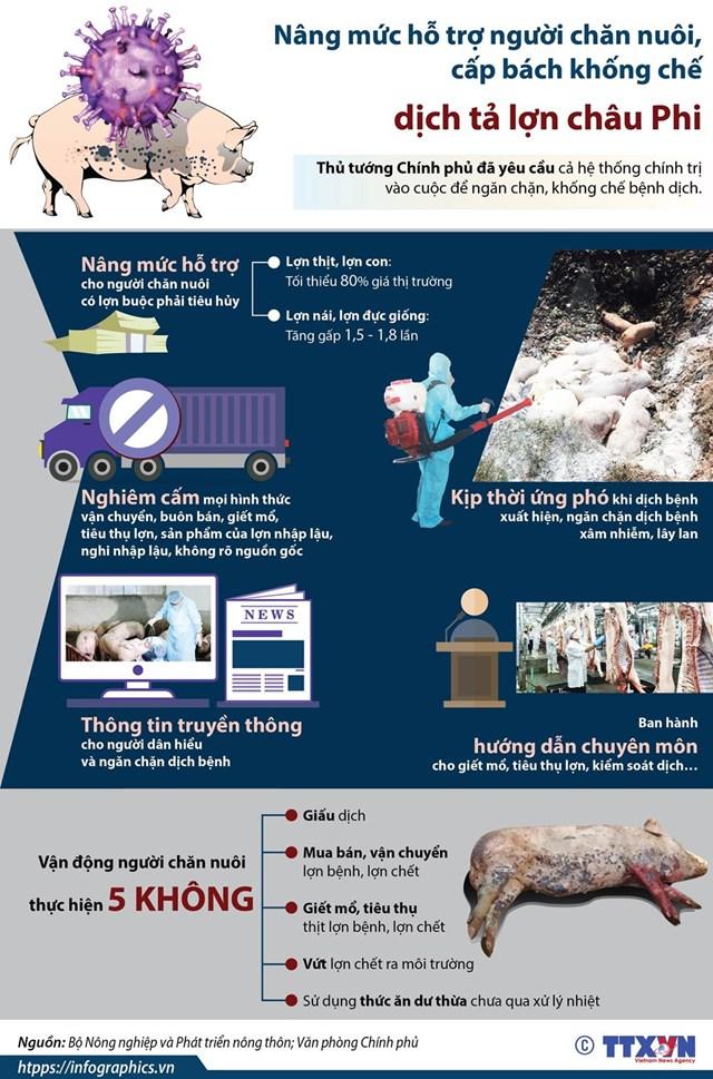 Nâng mức hỗ trợ người chăn nuôi, cấp bách khống chế dịch tả lợn