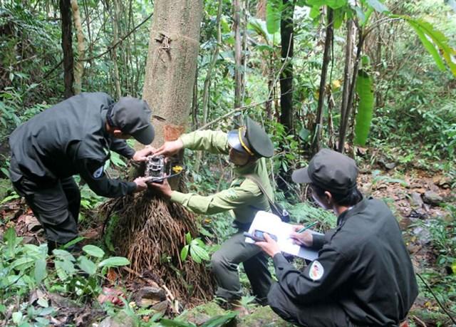 Bảo tồn đa dạng sinh học khu vực Trung Trường Sơn