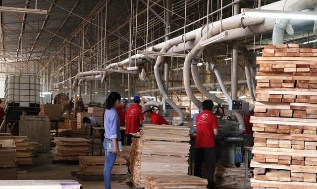 Cần chấm dứt độc quyền cung cấp nguyên liệu gỗ cao su
