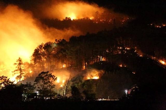 Hà Tĩnh: Rừng lại bị thiêu cháy xuyên đêm, dân tất tả di dời