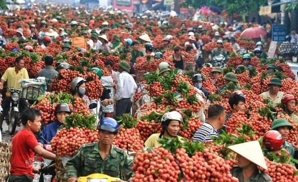 Không thể mãi xuất khẩu nông sản thô