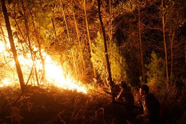 Hà Tĩnh: Rừng lại bị thiêu cháy xuyên đêm, dân tất tả di dời - 3