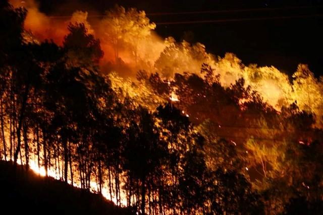 Hà Tĩnh: Rừng lại bị thiêu cháy xuyên đêm, dân tất tả di dời - 1