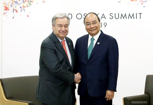 Thủ tướng gặp các nhà lãnh đạo Nga, Hàn Quốc, Đức, Australia, một số tổ chức quốc tế - 3