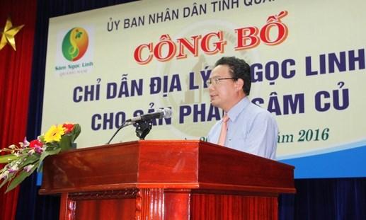 Công bố chỉ dẫn địa lý cho sản phẩm củ sâm Ngọc Linh