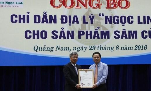 Công bố chỉ dẫn địa lý cho sản phẩm củ sâm Ngọc Linh - 1