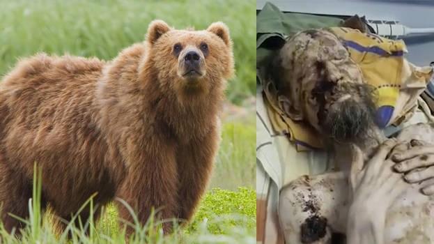 Thực hư câu chuyện người đàn ông nhìn như xác ướp, bị gấu tấn công
