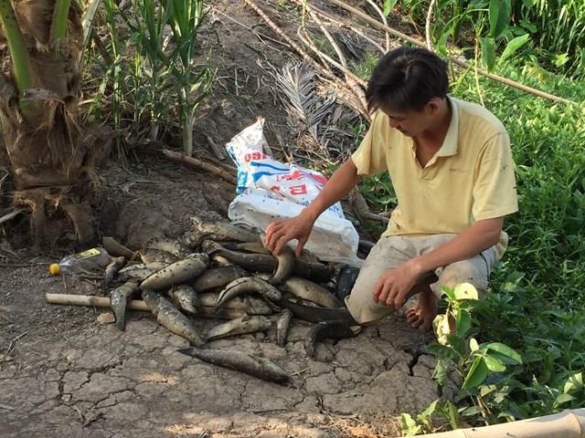 Hậu Giang: Nước sông ô nhiễm đe doạ đời sống người dân