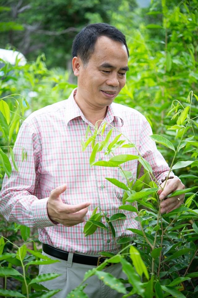 Người phụng sự cây trầm hương Việt Nam