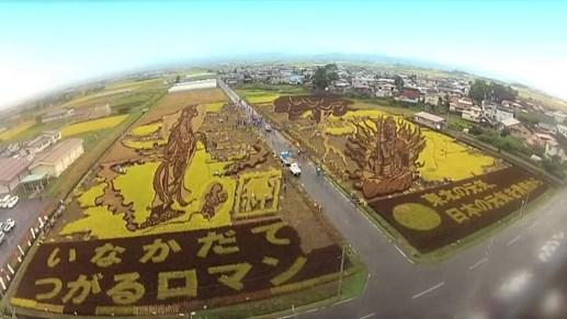 Lễ hội 'Hạt ngọc trời' lần đầu tiên tại Asia Park Đà Nẵng - 7