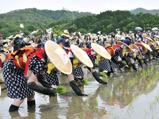 Lễ hội 'Hạt ngọc trời' lần đầu tiên tại Asia Park Đà Nẵng - 8