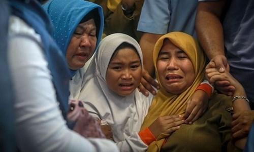 Gia đình nạn nhân vụ Lion Air tố bị lừa tiền bồi thường - 1