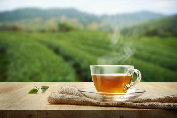 Rượu vang đỏ, trà hay càphê thì có lợi hơn cho cơ thể? - 1