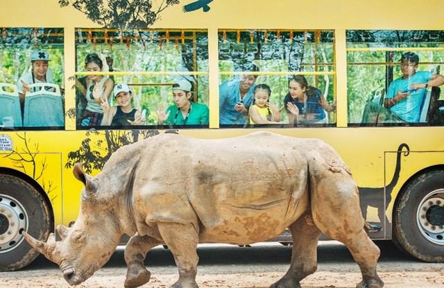 Vinpearl Safari điểm đến của bảo tồn và phúc trạng động vật lớn nhất Đông Nam Á 2019 - 2