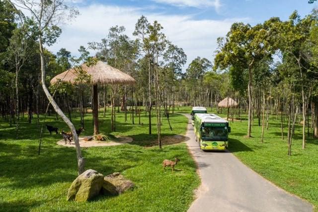 Vinpearl Safari điểm đến của bảo tồn và phúc trạng động vật lớn nhất Đông Nam Á 2019 - 4