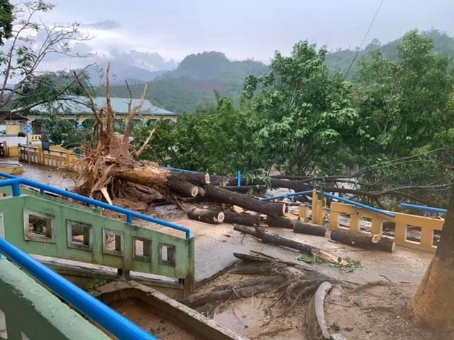 Quảng Nam: Cảnh tượng kinh hoàng sau trận lốc xoáy tại Nam Trà My