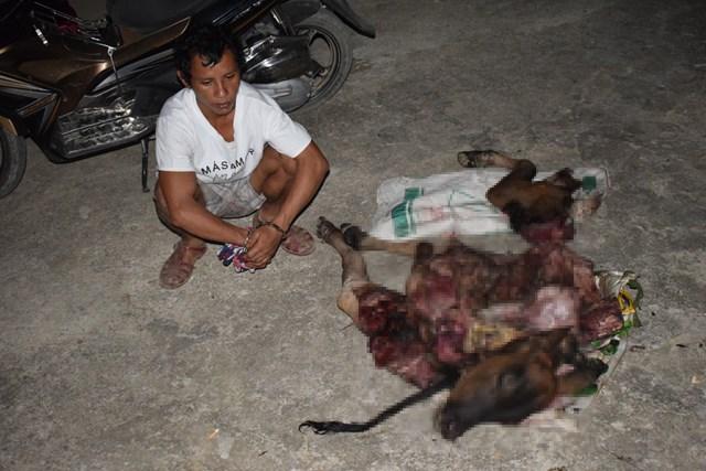Quảng Bình: Bắt thanh niên trộm bò, giết thịt đem bán