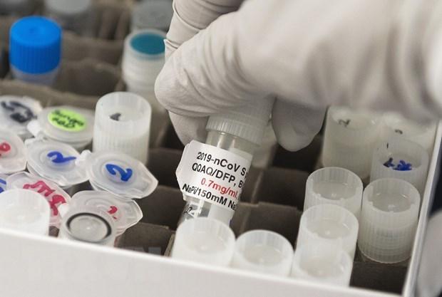 4 nước châu Âu thành lập liên minh vaccine ngừa virus SARS-CoV-2