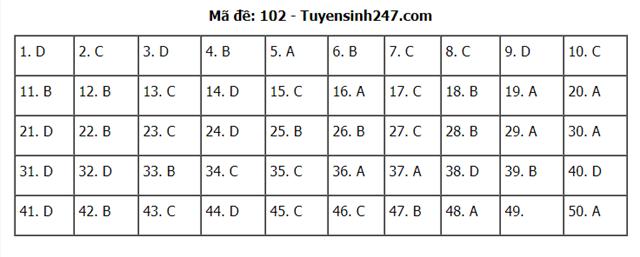 Gợi ý đáp án môn Toán thi tốt nghiệp THPT 2020 - Ảnh 6