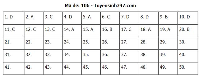 Gợi ý đáp án môn Toán thi tốt nghiệp THPT 2020 - Ảnh 7