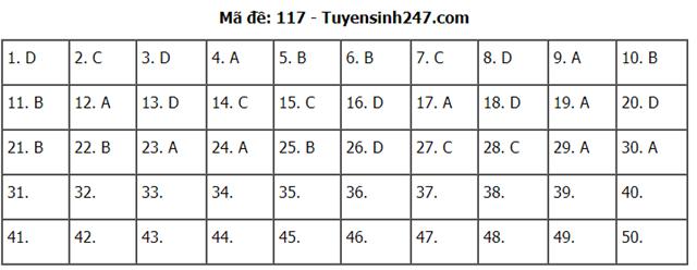 Gợi ý đáp án môn Toán thi tốt nghiệp THPT 2020 - Ảnh 9