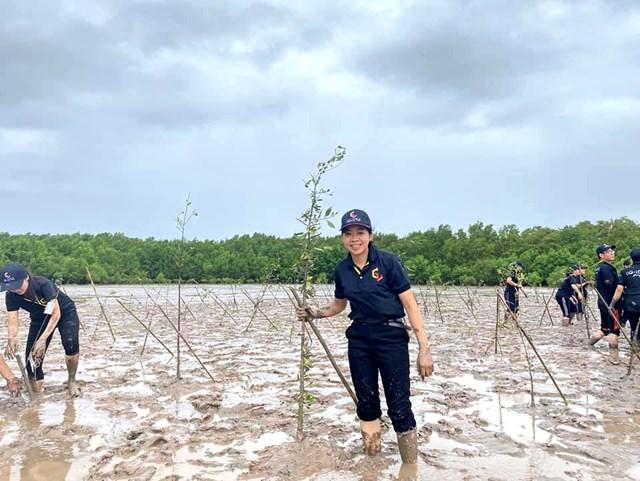 hoạt động trồng rừng của các tình nguyện viên