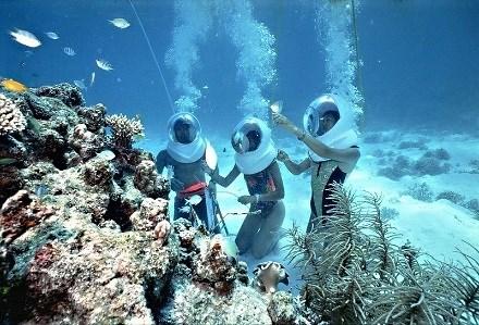 Giải mã sức hút kỳ nghỉ biệt thự biển - xu hướng du lịch thời thượng thế giới - Ảnh 7