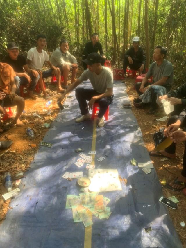 Băt quả tang các đối tượng trong rừng keo xã Bình An.