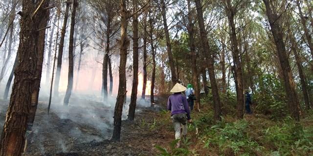 Sau hơn 3 tiếng nỗ lực dập lửa, đám cháy cơ bản được khống chế.