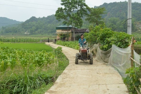 Nhiều tuyến đường nông thôn huyện Hà Quảng được bê tông hóa.
