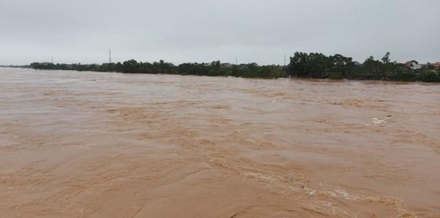 Lũ lên cao tại sông Thạch Hãn (Quảng Trị) sáng nay. (Ảnh: VTC).