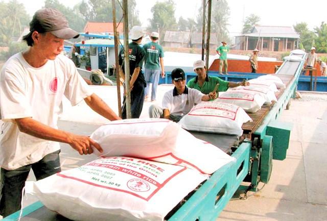 Liên kết chuỗi là một yếu tố quan trọng trong việc xây dựng thương hiệu gạo Việt.