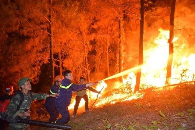 Lực lượng chức năng Hà Tĩnh vất vả chữa cháy rừng.
