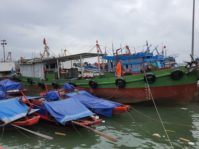 Tính đến 7h sáng ngày 2/8, toàn bộ tàu thuyền của tỉnh Nghệ An đã vào bờ tránh trú bão số 2.