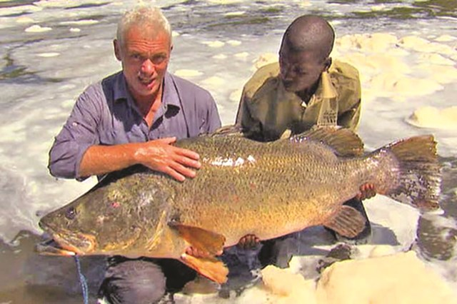 Câu được con cá rô nặng 45kg - Ảnh 1