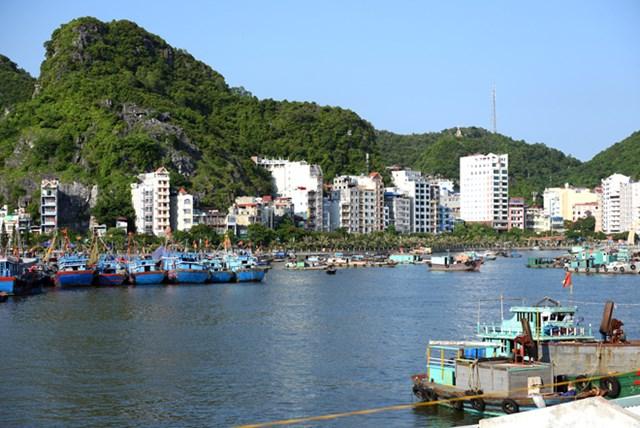 Huyện Cát Hải được công nhận là huyện đạt chuẩn nông thôn mới năm 2019.