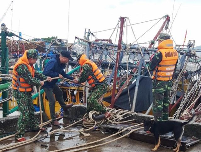 Cán bộ, chiến sỹ Đồn BP Quảng Đức (huyện Hải Hà, Quảng Ninh) giúp ngư dân gia cố, chằng buộc tàu thuyền tránh trú bão.