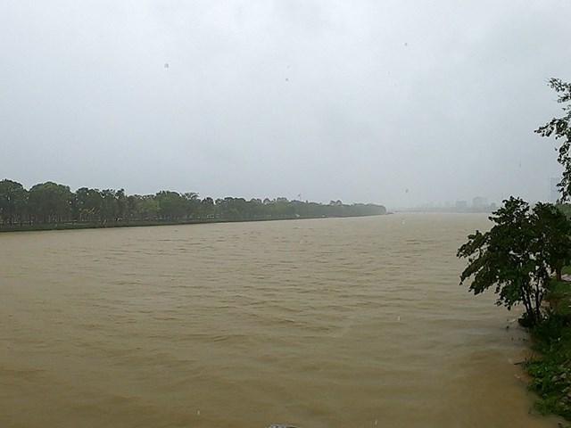 Nước tại sông Hương đoạn chảy qua địa phận TP Huế vào ngày 7/10. Ảnh N.Do.