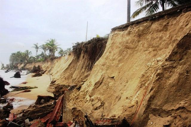 Hơn 100 mét bờ biển bị triều cường tấn công gây sạt lở nặng.