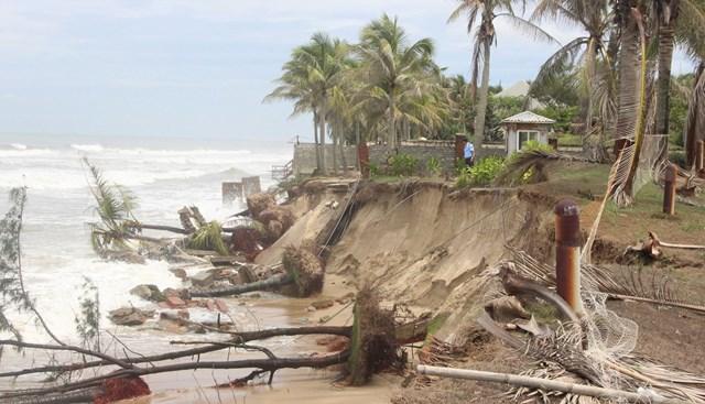 Một góc bờ biển TP Hội An bị sạt lở.
