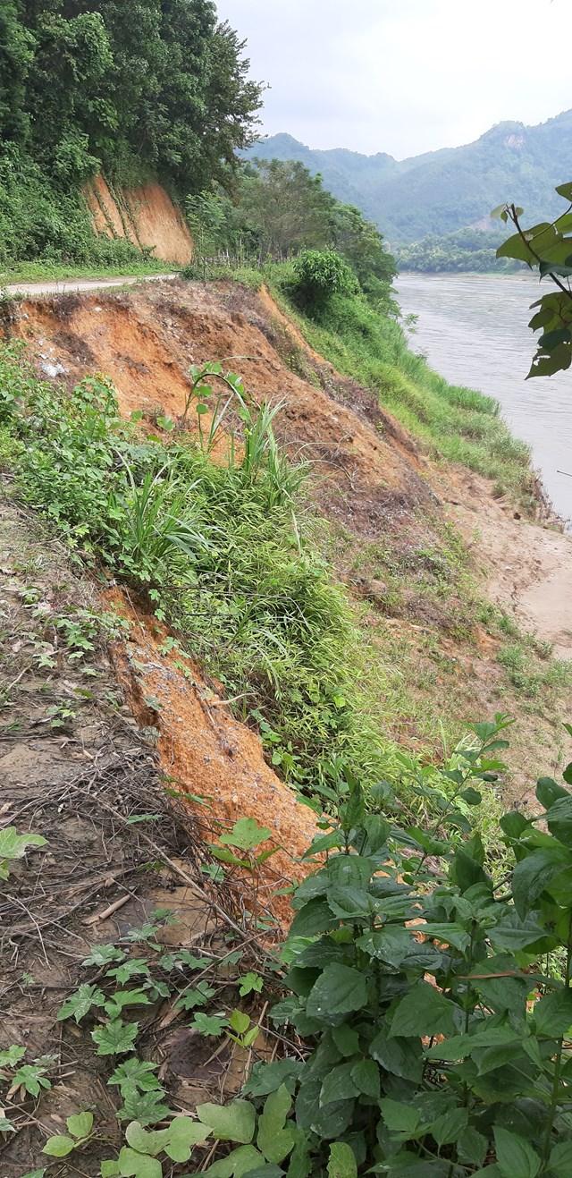 Bờ sông thôn Văn Lập bị sạt lở do khai thác cát sỏi đã ăn sâu vào đường giao thông.