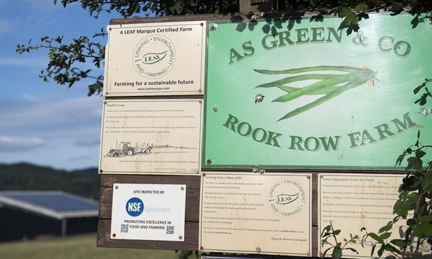 Nông trang AS Green & Co. (Nguồn: Getty Images).