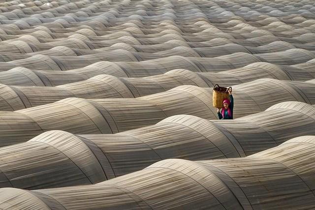 """Bức """"Ánh sáng và giai điệu"""" của nhiếp ảnh gia Leyla Emektar đến từ Thổ Nhĩ Kỳ."""