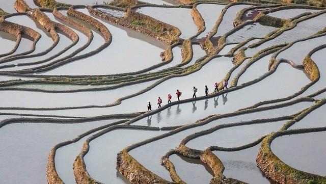 """Bức """"Đi làm"""" của nhiếp ảnh gia Sofie Rysheuvels chụp tại Nguyên Dương, Trung Quốc."""