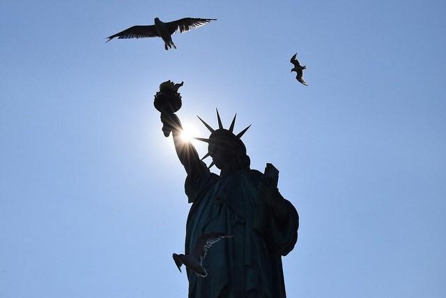 Bức ảnh được chụp bởi tác giả Ben Cole tại New York, Mỹ.