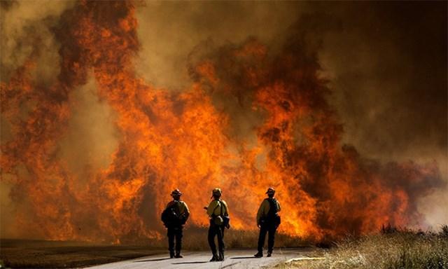 Lính cứu hỏa nhìn ngọn lửa của đám cháy Apple ở Thung lũng Cherry, bang Calirfornia, ngày 1/8. Ảnh: AP.
